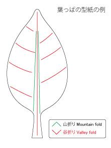leaf00