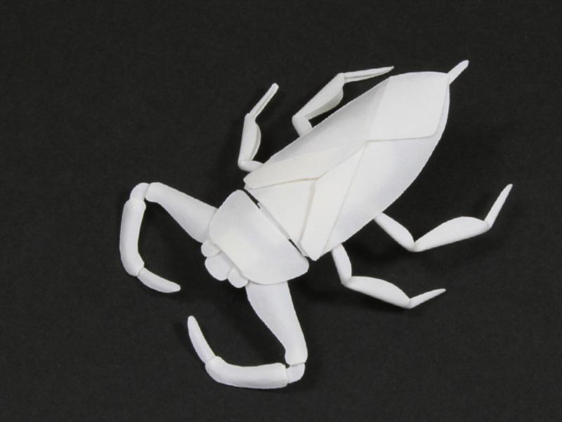 ファイバークラフト紙で作るタガメ2